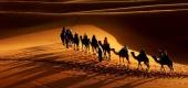 آیا سر حضرت عباس را سمت کوفه و سپس شام همراه اسیران بردند؟